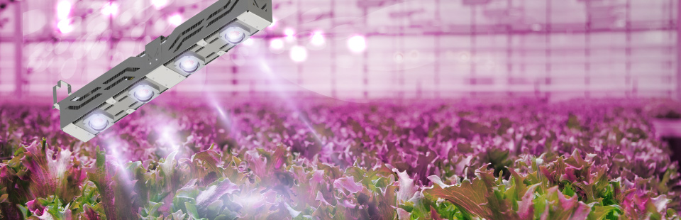 LED Grow Light CoolStack®